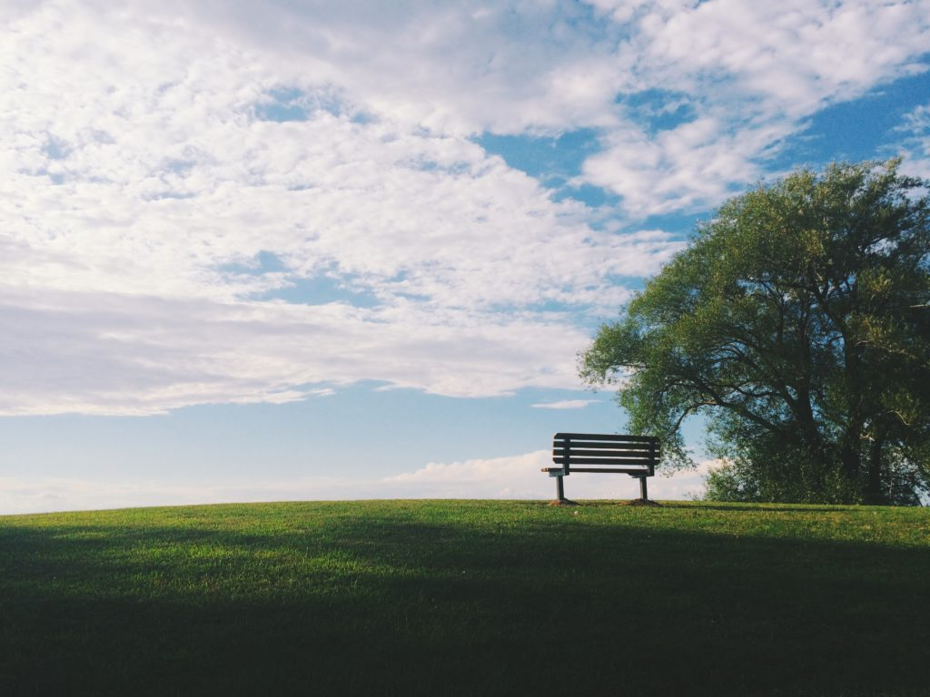 bench in field